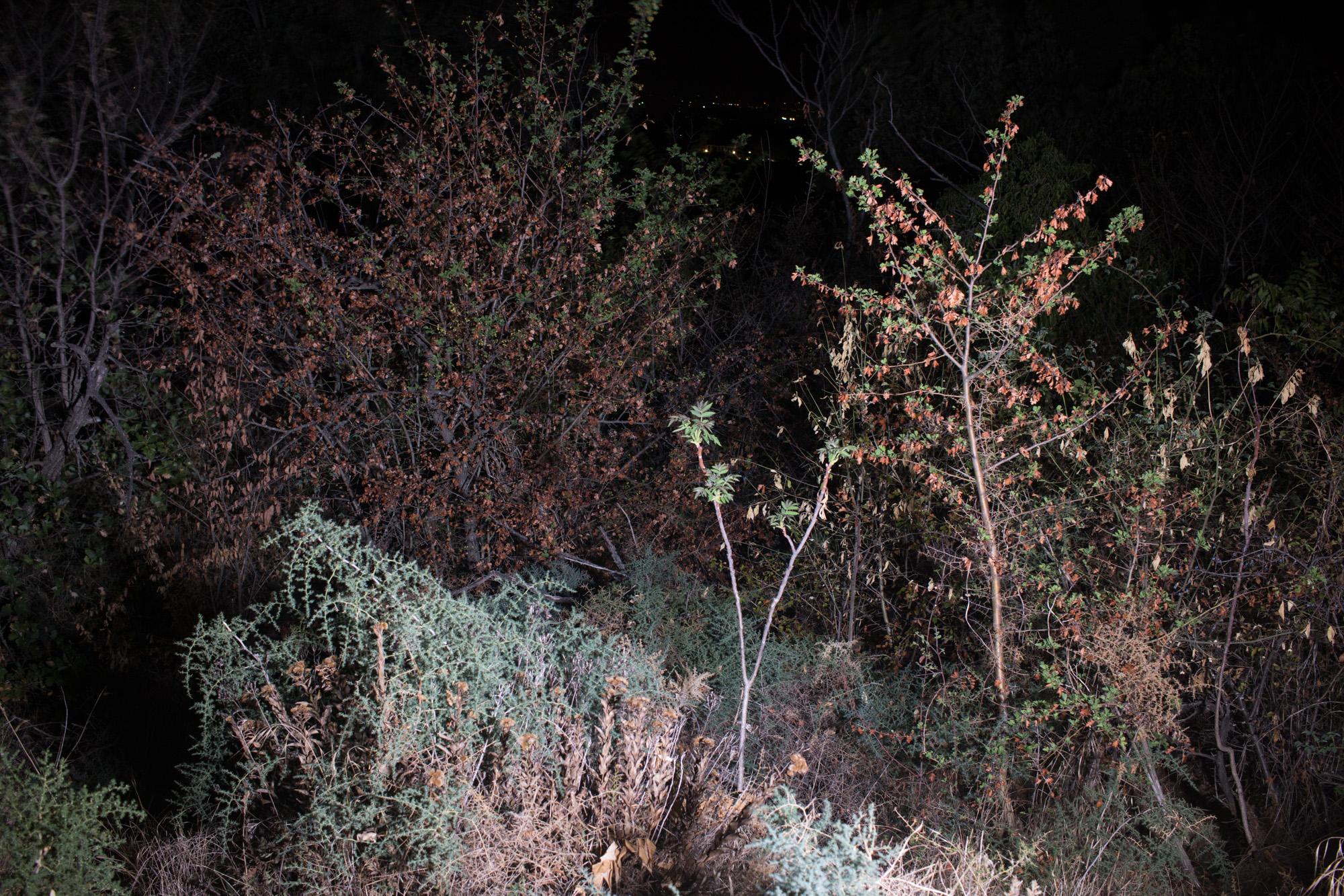 Il bello essenziale nella fotografia notturna 09